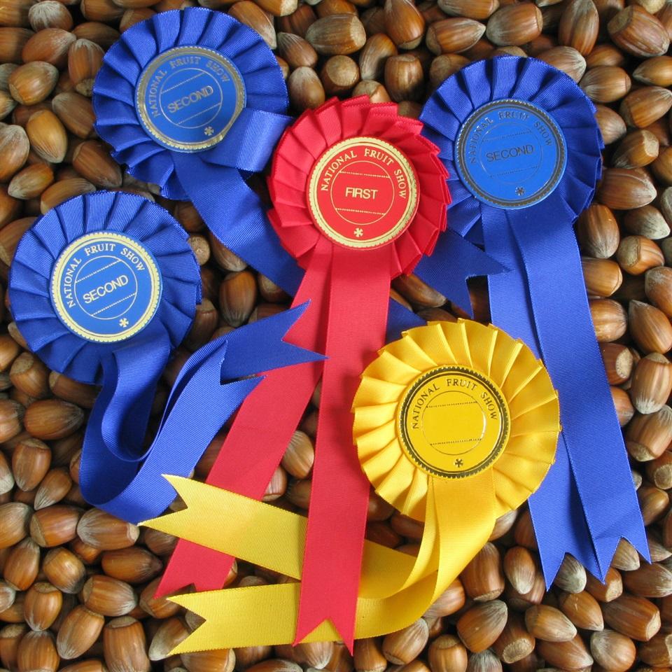 Award Winning Golden Brown Kentish Cobnuts
