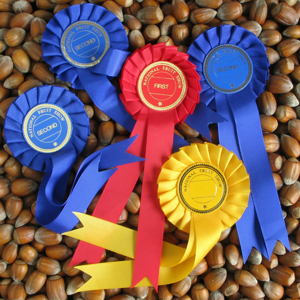 Award Winning Golden Brown Kentish Cobnuts