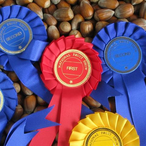 Award Winning Golden Brown Kentish Cobnut
