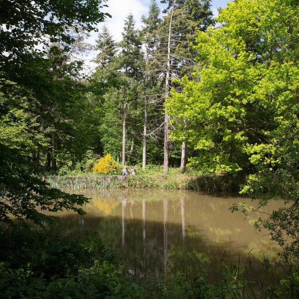 Farnell Farm Pookwell Pond