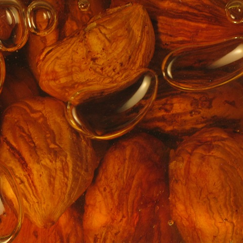 Whole Roasted Kentish Cobnuts in Sussex Honey