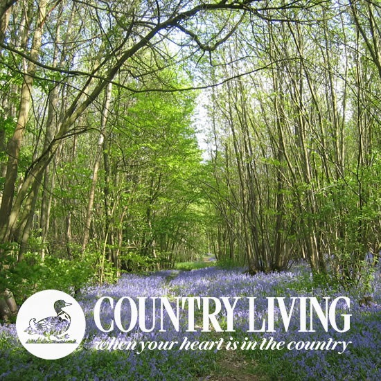 Country Living Magazine 2009