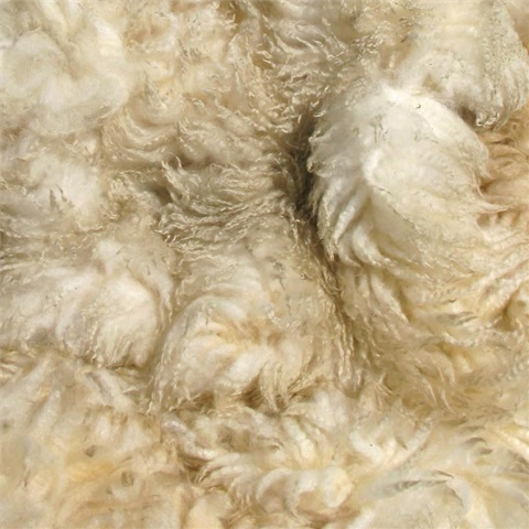 Pure New Wool Fleeces
